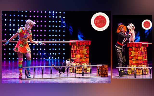Міжнародний цирковий фестиваль  дю Сірк де Массі
